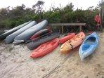 Complimentary Kayaks