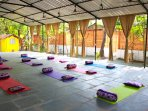 Our spacious yoga shala fully equipped.