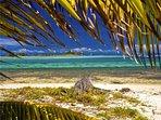 Anchorage Kite Beach Cottage - Union Island
