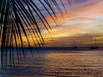 Rolling Surf - Grenada