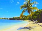 Lovers Lane - Grenada