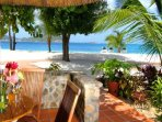 Beachfront Rooms - Palm Island Resort - Palm Island