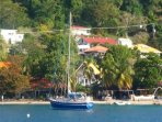 Frangipani Hotel-Deluxe - Bequia