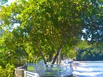 Mimosa Cottage - Bequia