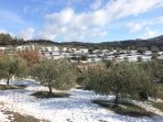 Snow at Poparello.  Very unusual. (December 2017)