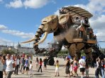 The amazing mechanical elephant