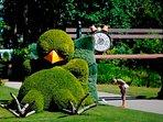 Gli splendidi giardini botanici a Nantes