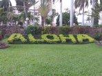 Aloha welcome