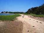 Just a beautiful, picturesque spot on the water is just up the street. It's an easy walk! - North Chatham Cape Cod...