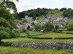 Village of Brassington