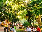 Just few minutes away is Estrela Garden, perfect for breakfast, jogging or a nature moment