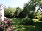 Lush green lawn and appealing landscaping