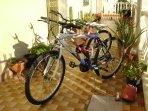 due biciclette offerte gratis per passeggiate o per raggiungere i negozi per fare la spesa