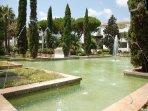The beautiful water gardens
