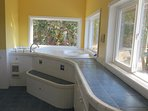 Step up and soak in this amazing tub with ... you guessed it..amazing ocean view
