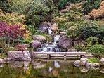 Kyoto Gardens - Holland Park, 15 minutes walk away.