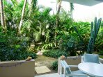 shady, private and quiet patio with lovely tropical plants