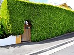 Hedge Cottage-Street View