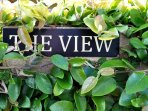 The View-Welcome
