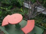 Garden park bench near the plumb tree