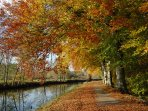 Enjoy a stroll along the nearby canal enjoying the beautiful autumn colours