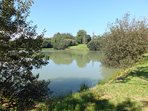 The grounds on Blagdon Farm include a fishing lake, orchard, woodland walk and football field.