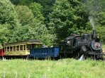 Ride a historic train on the Durbin & Greenbrier Valley Railroad