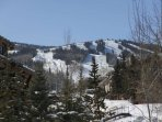 Just across the street from the Tamarack complex is the ***** Hill chair lift and Treehouse ski school.   Ski back to...