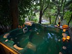 Fabulous relaxing spa pool on the bank of the Waiau River just above the swimming hole.