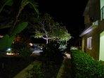 Night Garden setting