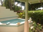 Luxurious private plunge pool
