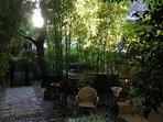 Le jardin et son jacuzzi