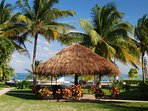Spacious, well-maintained grounds and shady palapas for reading or a short siesta