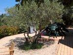 terrasse et pergola salon de jardin