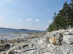 Shoreline and beach