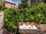 2 bedroom Apartment in Sant'Enea, Tuscany, Italy : ref 5537836