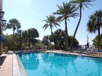 Our  pool on the beach, very RARE on Siesta Key.  Come have fun in the sun.  YOU DESERVE IT.
