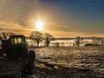 A crispy cold winters morning at Owslow Farm