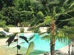 Autre vue du côté piscine