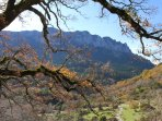 A walk in the stunning Sierra de Grazalema, less than 30 mins´ drive from the property
