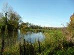 Paysage bucolique le long de l'Yonne