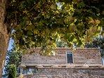 El hórreo, una edificación tradicional gallega que es parte del conjunto