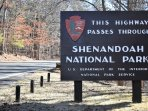 Make memories in Shenandoah National Park!