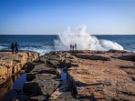 Schoodic Point - part of Acadia National Park