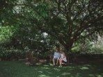 Lush gardens and surroundings to enjoy