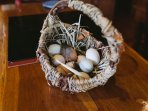 No shortage of eggs from our happy, free-range hens!