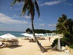 next to us: 5 star Mövenpick Resort with Beach Bar