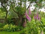Bronte School House garden in May