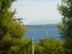 H Pierida (8+4): view