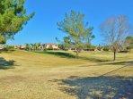 beautiful landscape and park